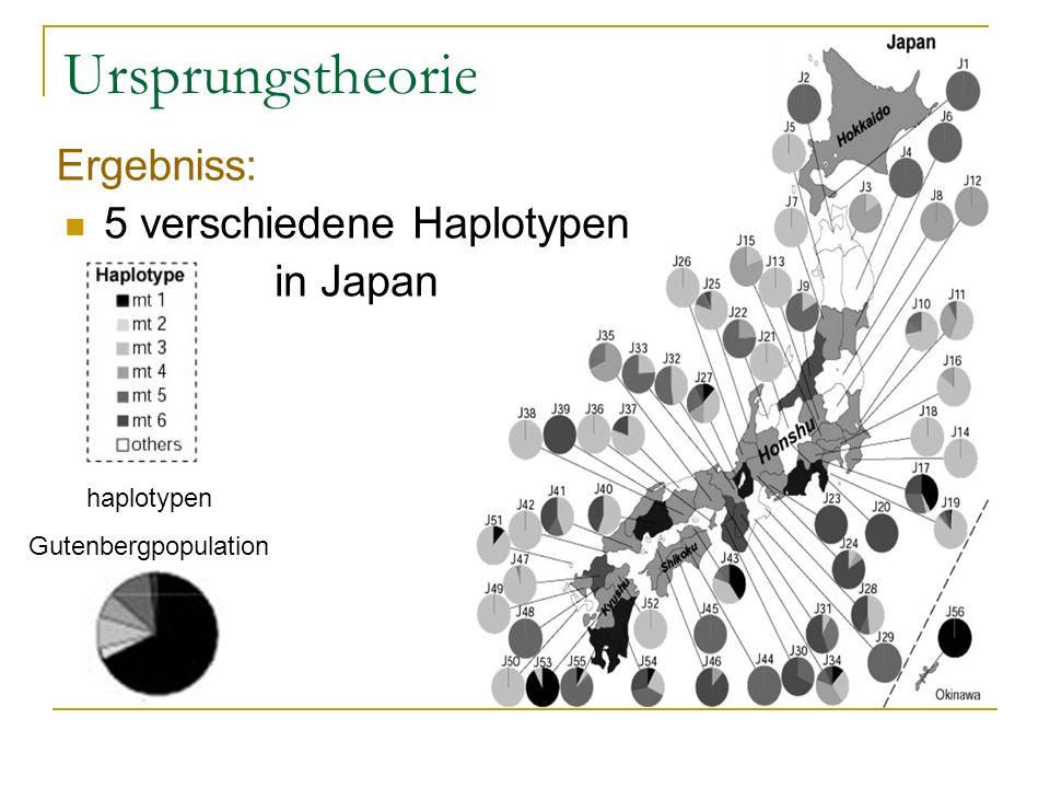 Ursprungstheorie Ergebniss: 5 verschiedene Haplotypen in Japan