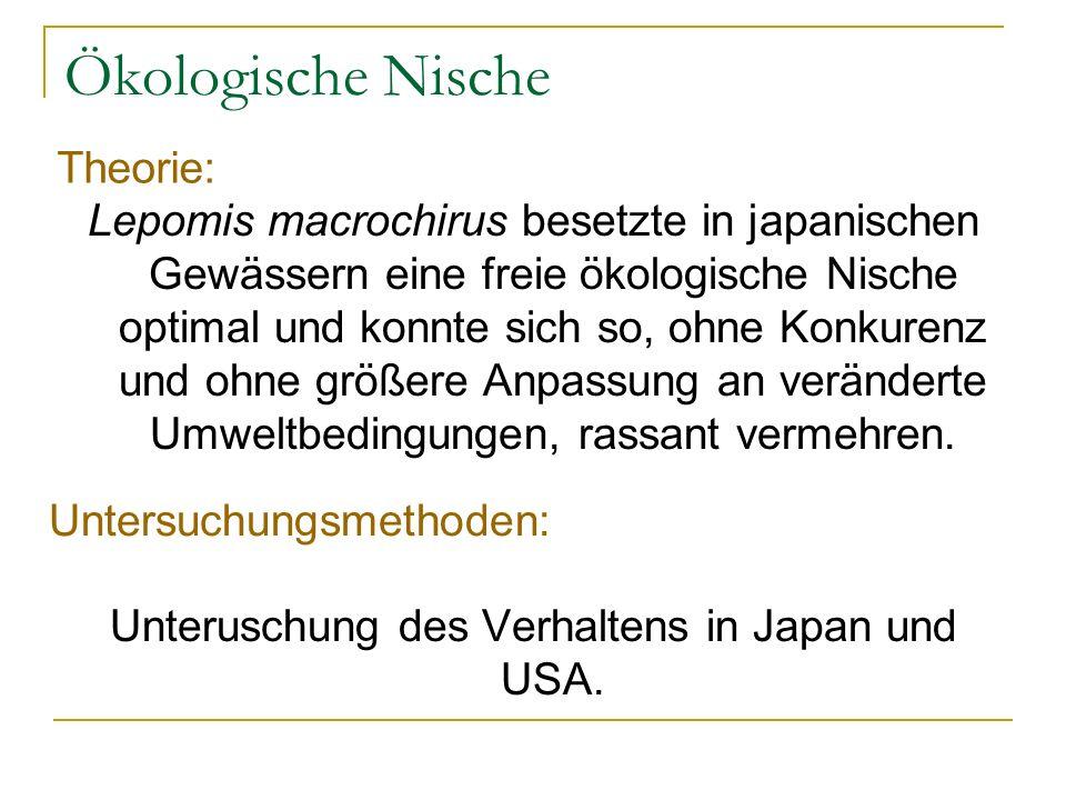 Unteruschung des Verhaltens in Japan und USA.