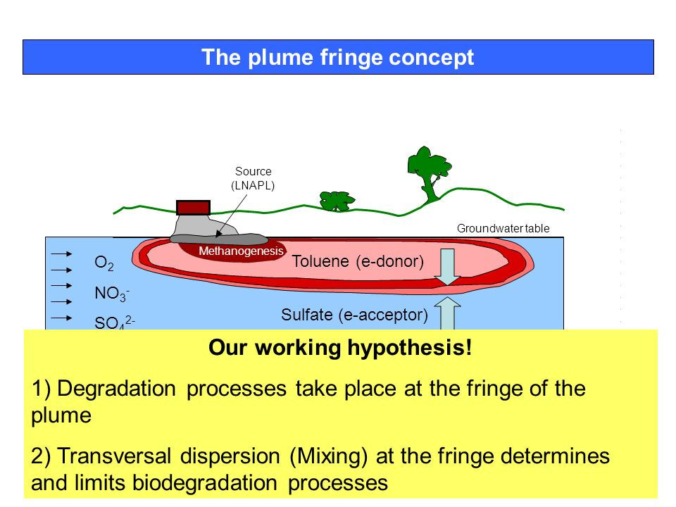 The plume fringe concept Our working hypothesis!