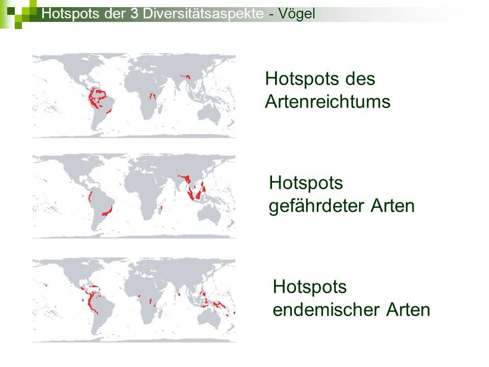 Hotspots des Artenreichtums Hotspots gefährdeter Arten Hotspots