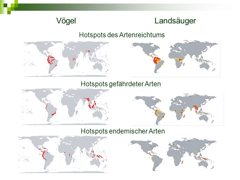Vögel Landsäuger Hotspots des Artenreichtums