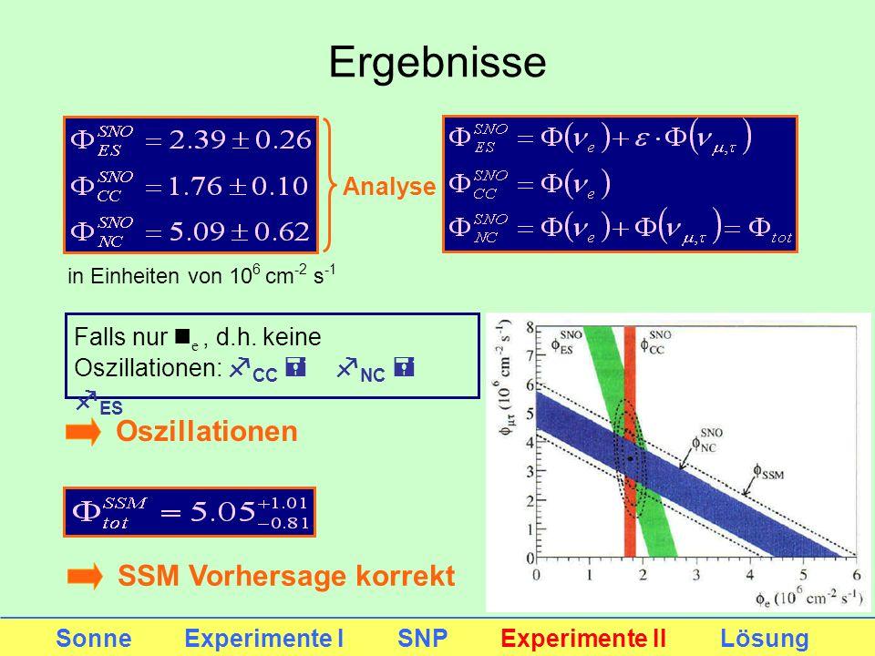 Ergebnisse Oszillationen SSM Vorhersage korrekt Analyse