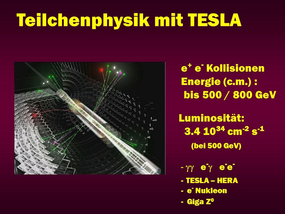 Teilchenphysik mit TESLA