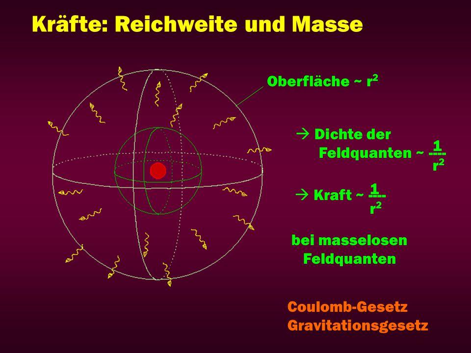 Kräfte: Reichweite und Masse