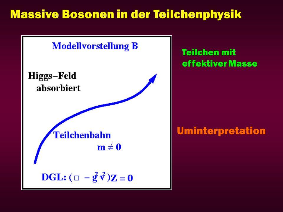Massive Bosonen in der Teilchenphysik