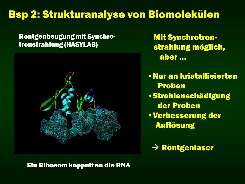 Bsp 2: Strukturanalyse von Biomolekülen