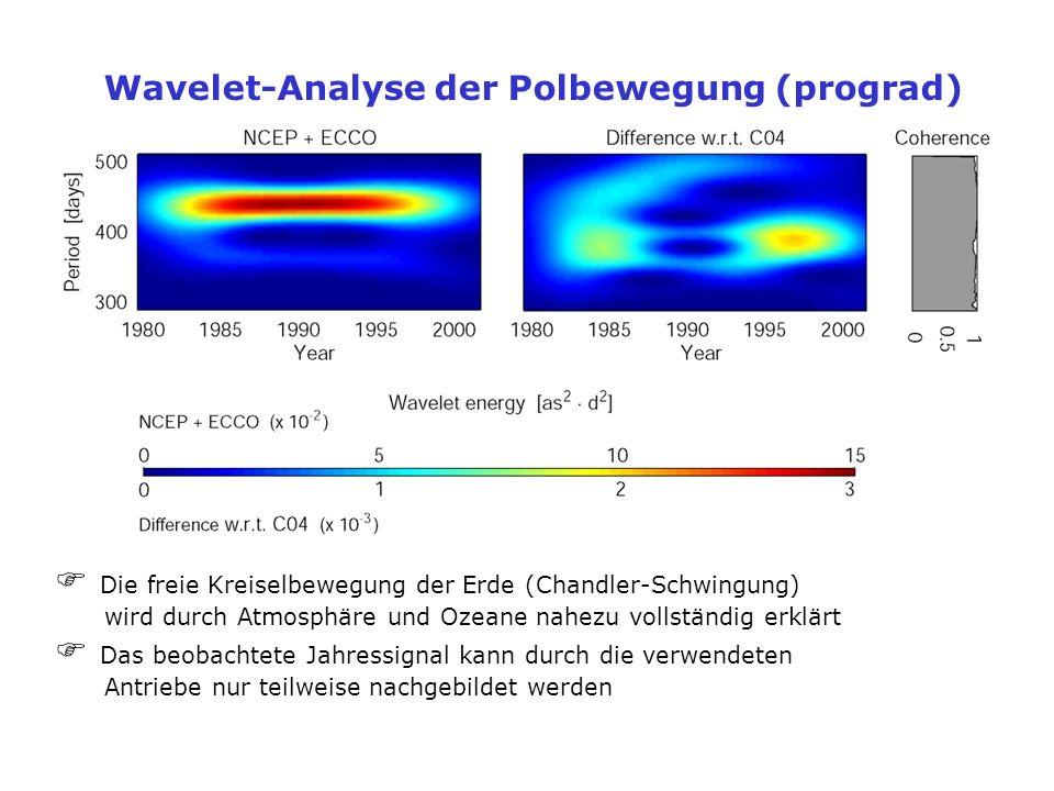 Wavelet-Analyse der Polbewegung (prograd)
