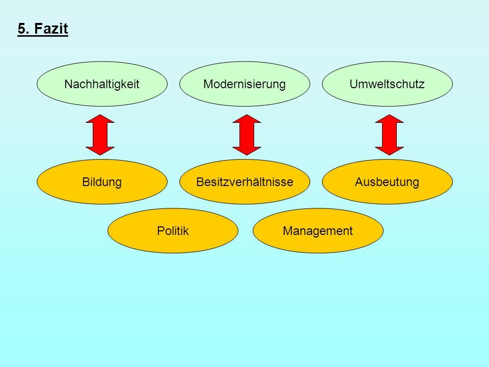 5. Fazit Nachhaltigkeit Modernisierung Umweltschutz Bildung