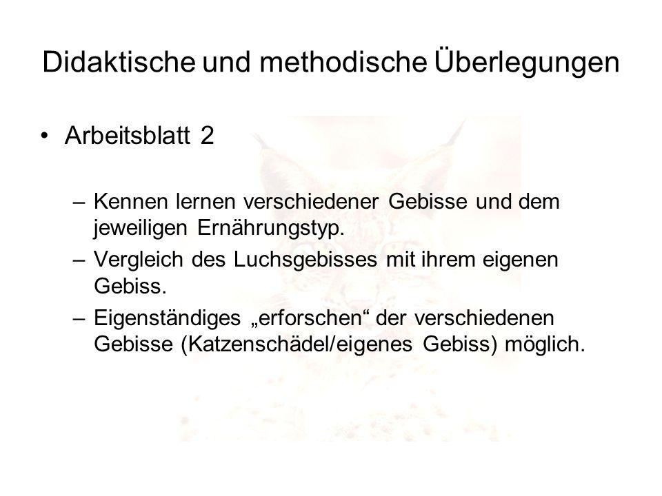 Didaktische und methodische Überlegungen