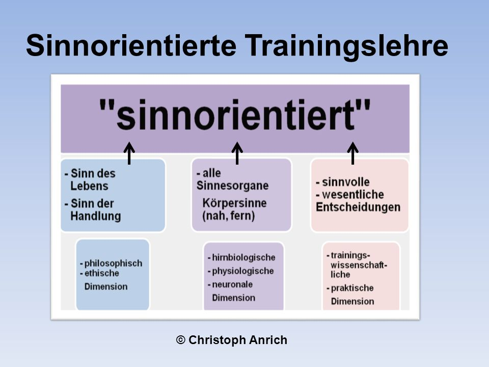 Sinnorientierte Trainingslehre