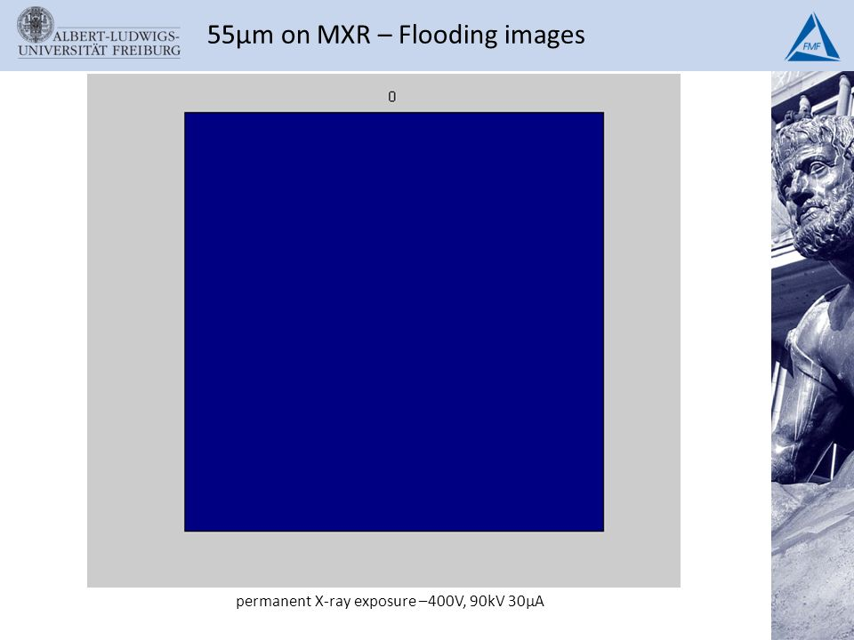 55µm on MXR – Flooding images