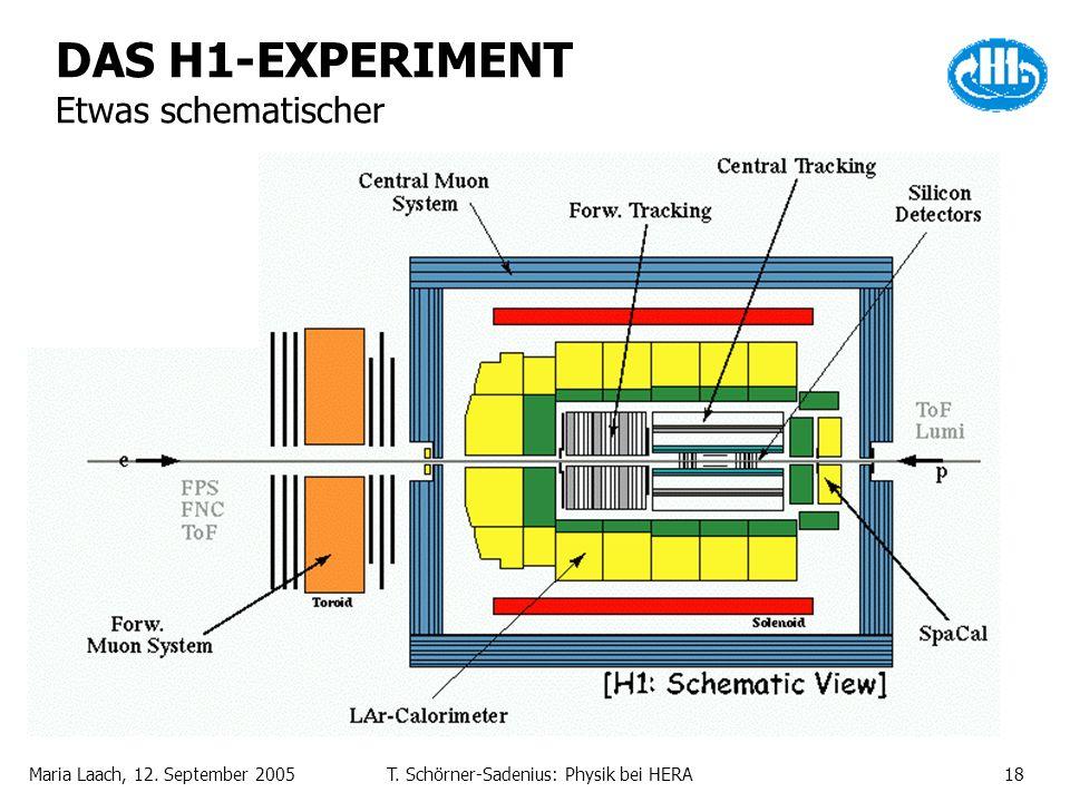 DAS H1-EXPERIMENT Etwas schematischer