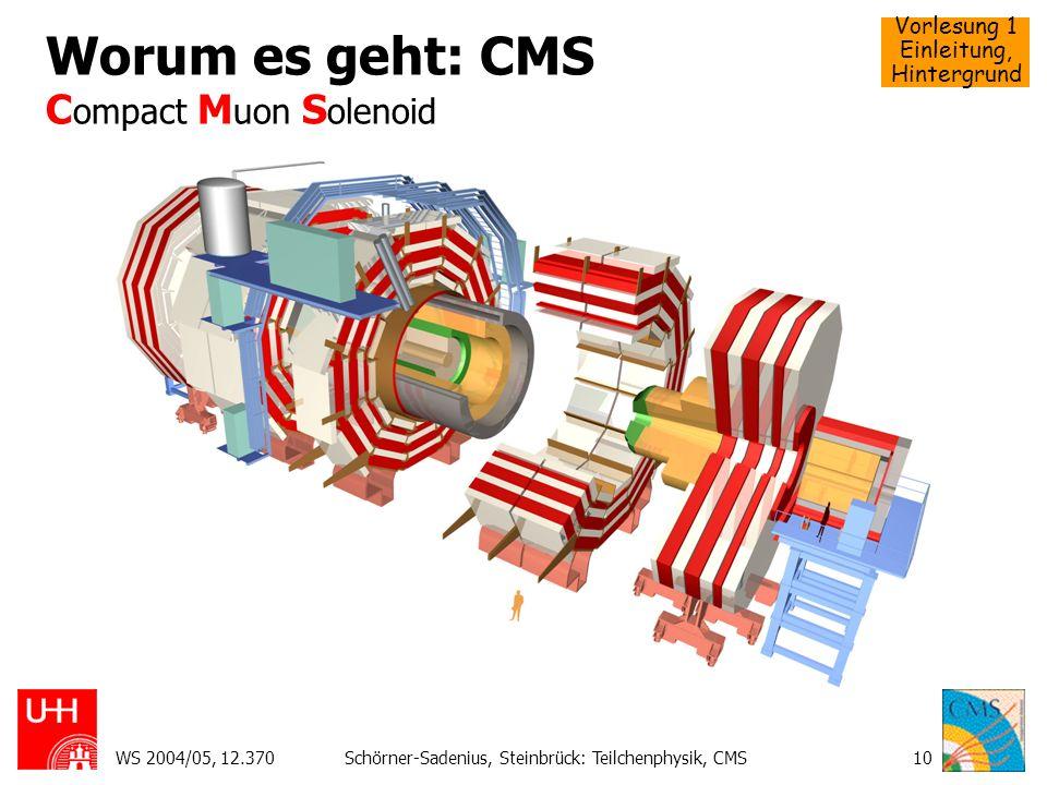 Worum es geht: CMS Compact Muon Solenoid