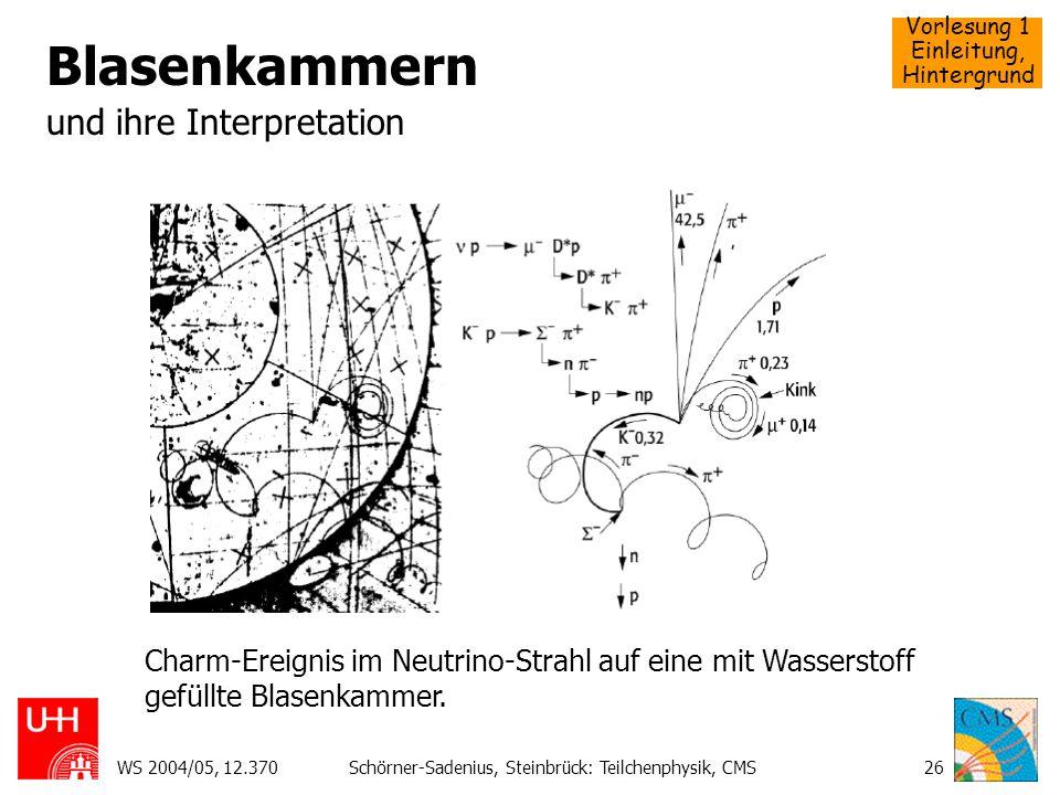 Blasenkammern und ihre Interpretation