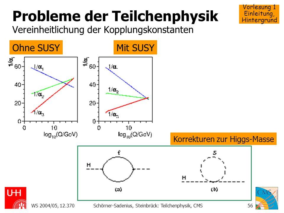 Probleme der Teilchenphysik Vereinheitlichung der Kopplungskonstanten