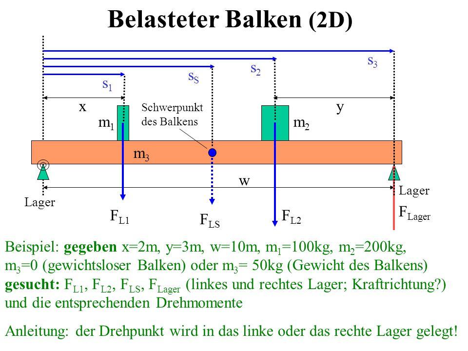 Belasteter Balken (2D) FLager x y m1 FL1 FL2 FLS m2 m3 w s1 sS s2 s3