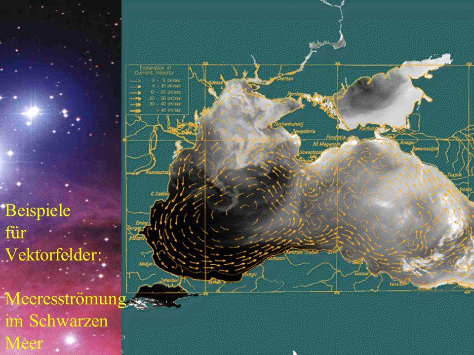 Beispiele für Vektorfelder: Meeresströmung im Schwarzen Meer