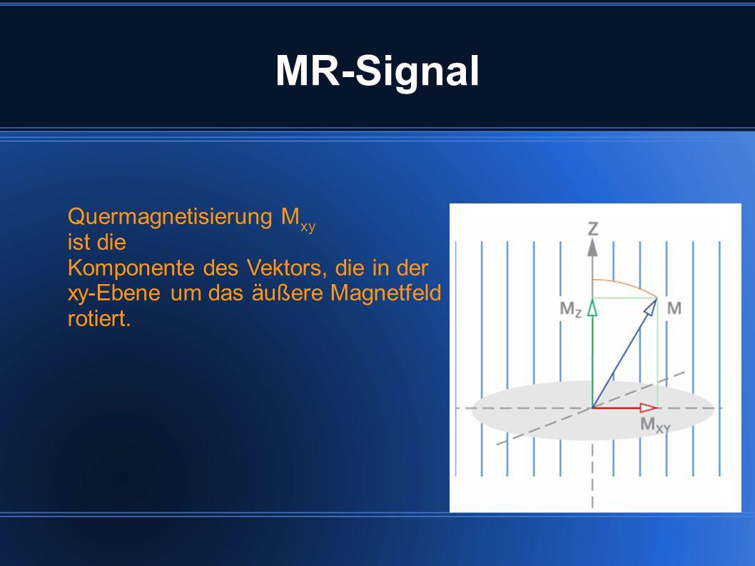 MR-Signal Quermagnetisierung Mxy ist die
