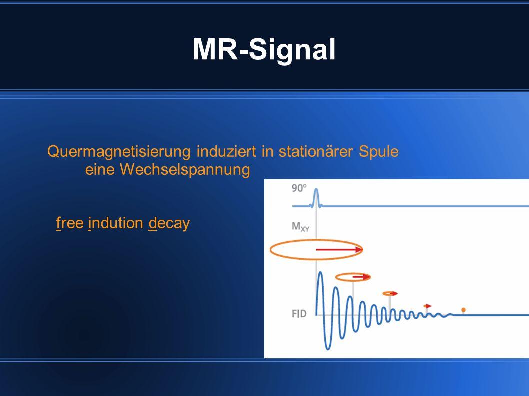 MR-Signal Quermagnetisierung induziert in stationärer Spule