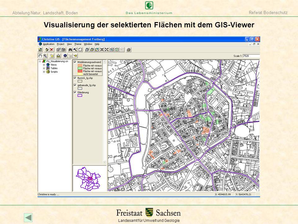 Visualisierung der selektierten Flächen mit dem GIS-Viewer