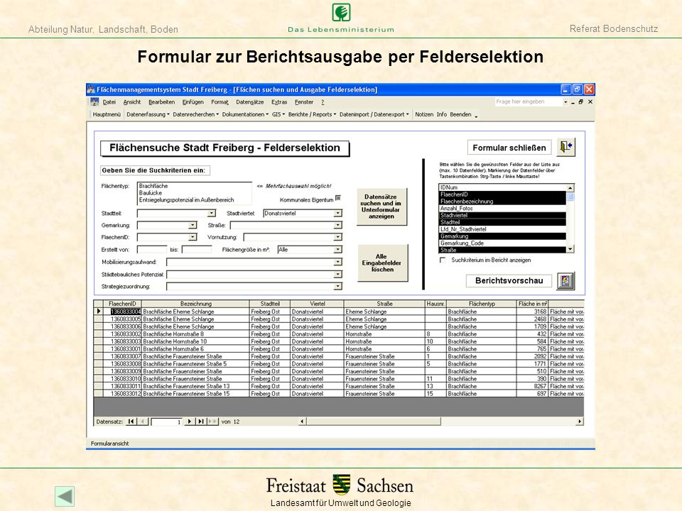 Formular zur Berichtsausgabe per Felderselektion