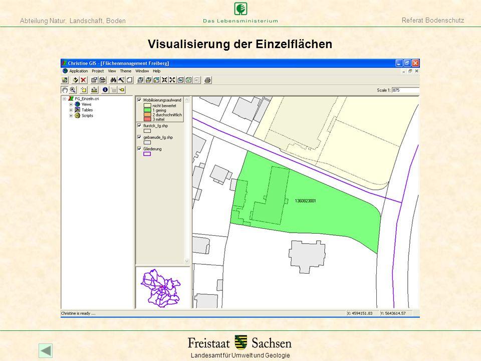 Visualisierung der Einzelflächen