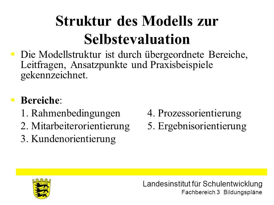 Struktur des Modells zur Selbstevaluation