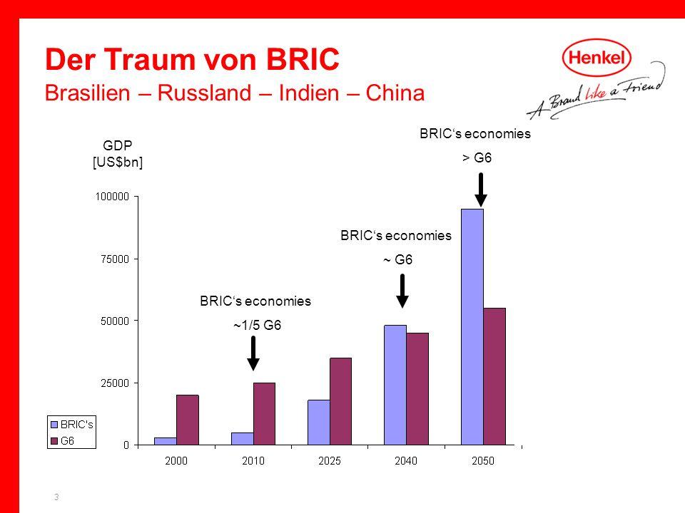 Der Traum von BRIC Brasilien – Russland – Indien – China