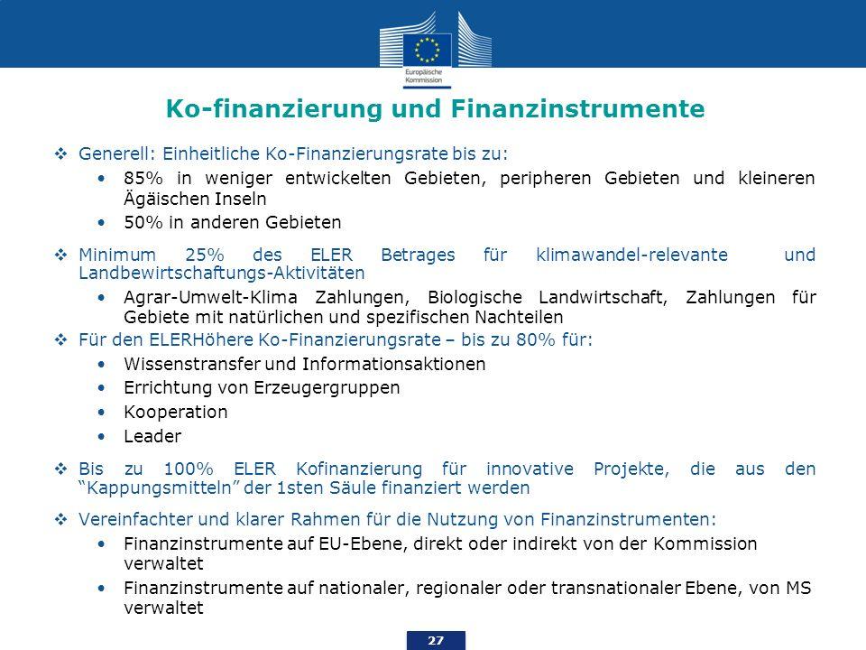 Ko-finanzierung und Finanzinstrumente