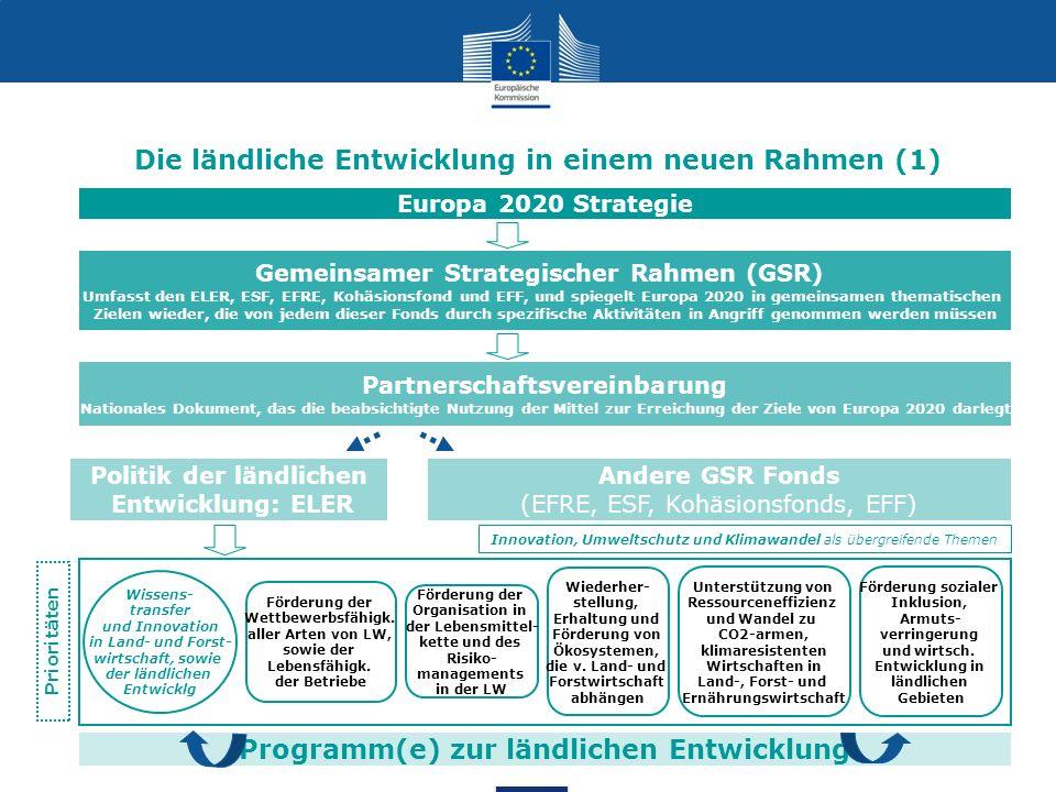 Die ländliche Entwicklung in einem neuen Rahmen (1)