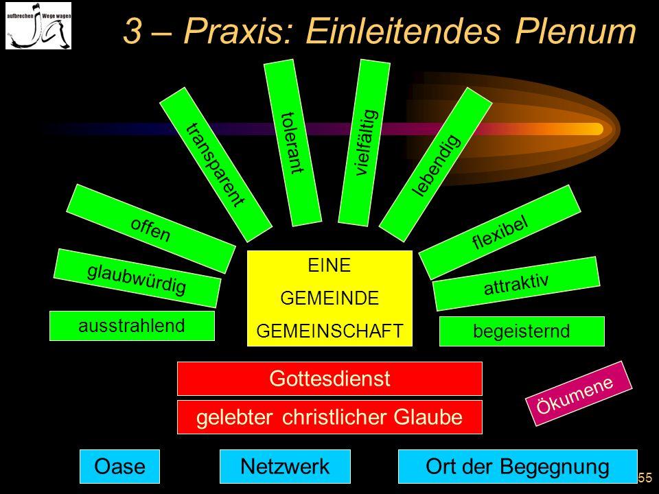 3 – Praxis: Einleitendes Plenum