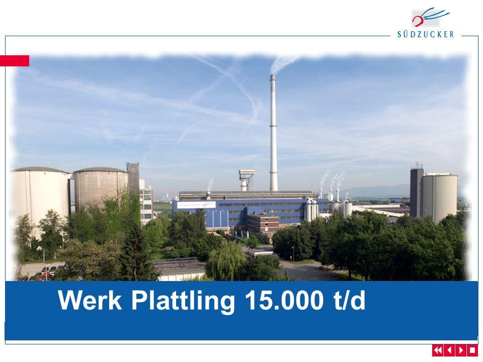 Werk Plattling 15.000 t/d