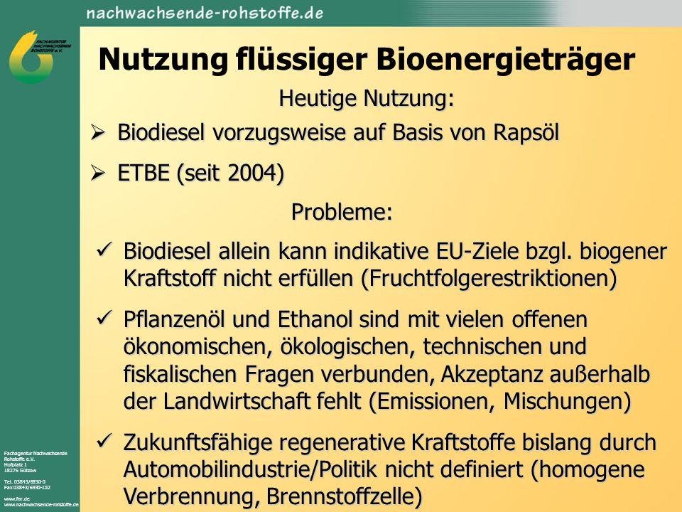 Nutzung flüssiger Bioenergieträger