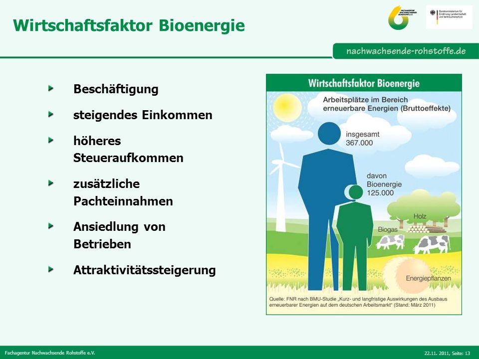 Wirtschaftsfaktor Bioenergie