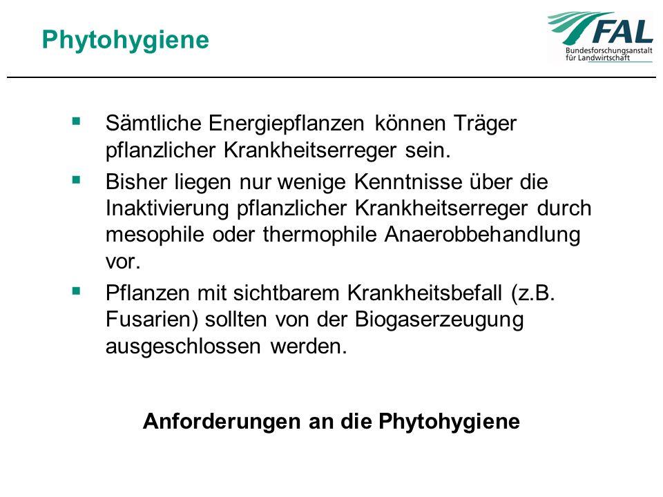 Anforderungen an die Phytohygiene