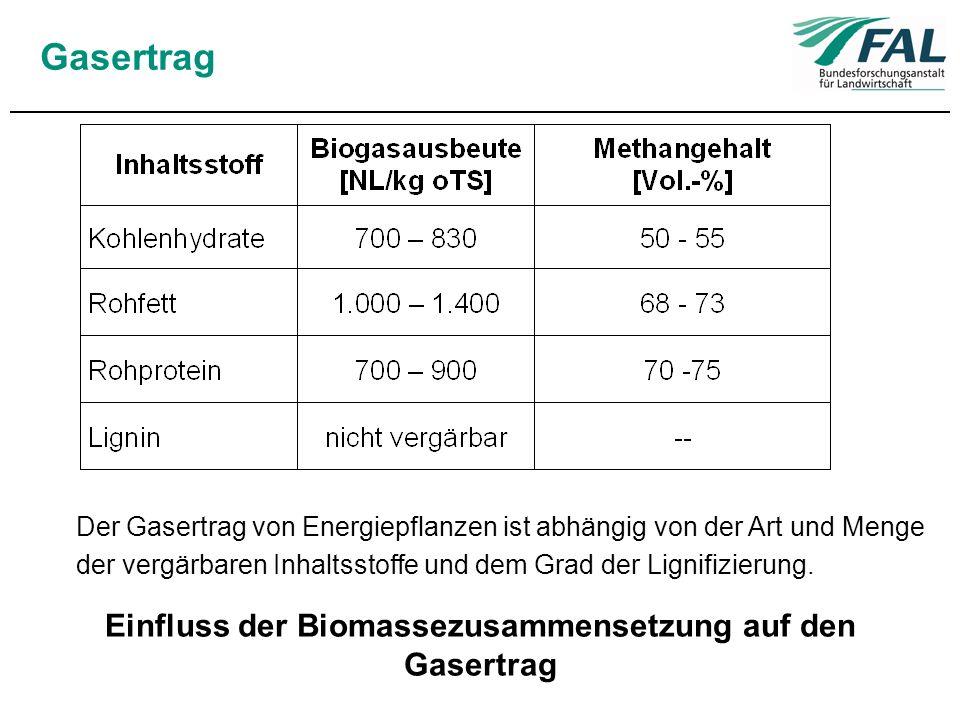 Einfluss der Biomassezusammensetzung auf den Gasertrag