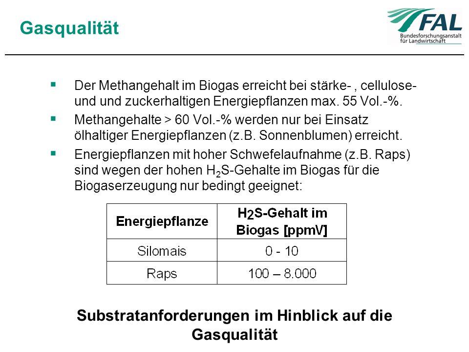 Substratanforderungen im Hinblick auf die Gasqualität