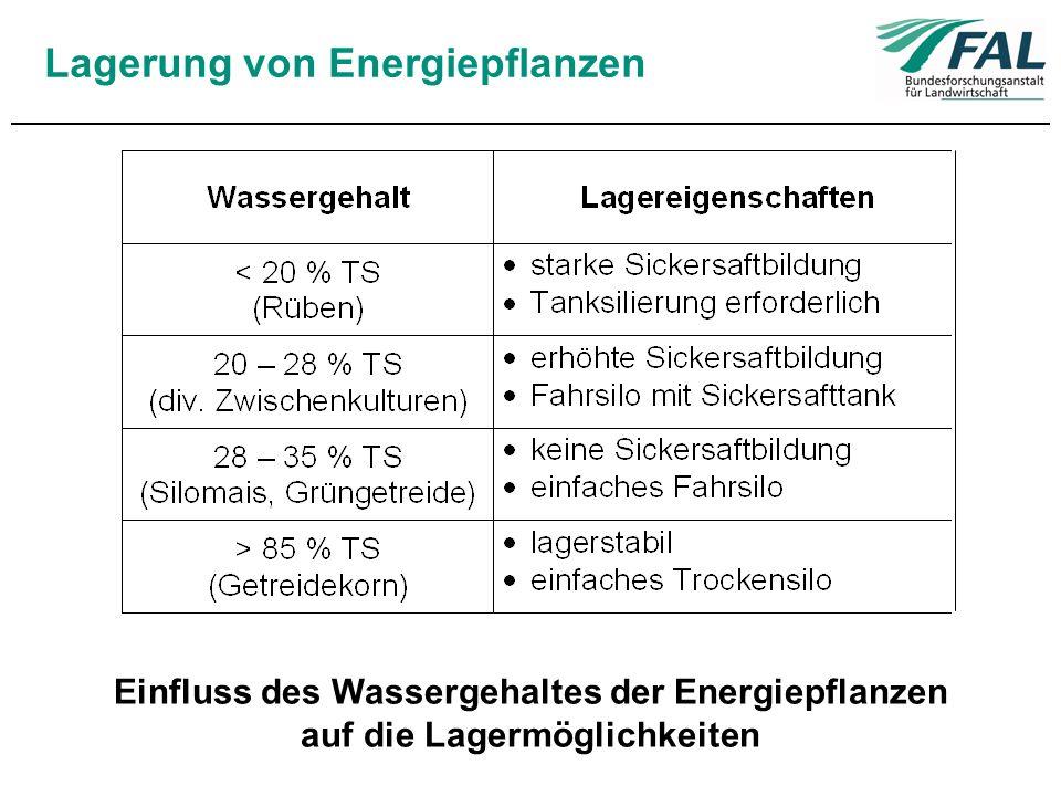 Lagerung von Energiepflanzen