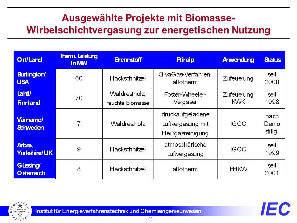Ausgewählte Projekte mit Biomasse-Wirbelschichtvergasung zur energetischen Nutzung