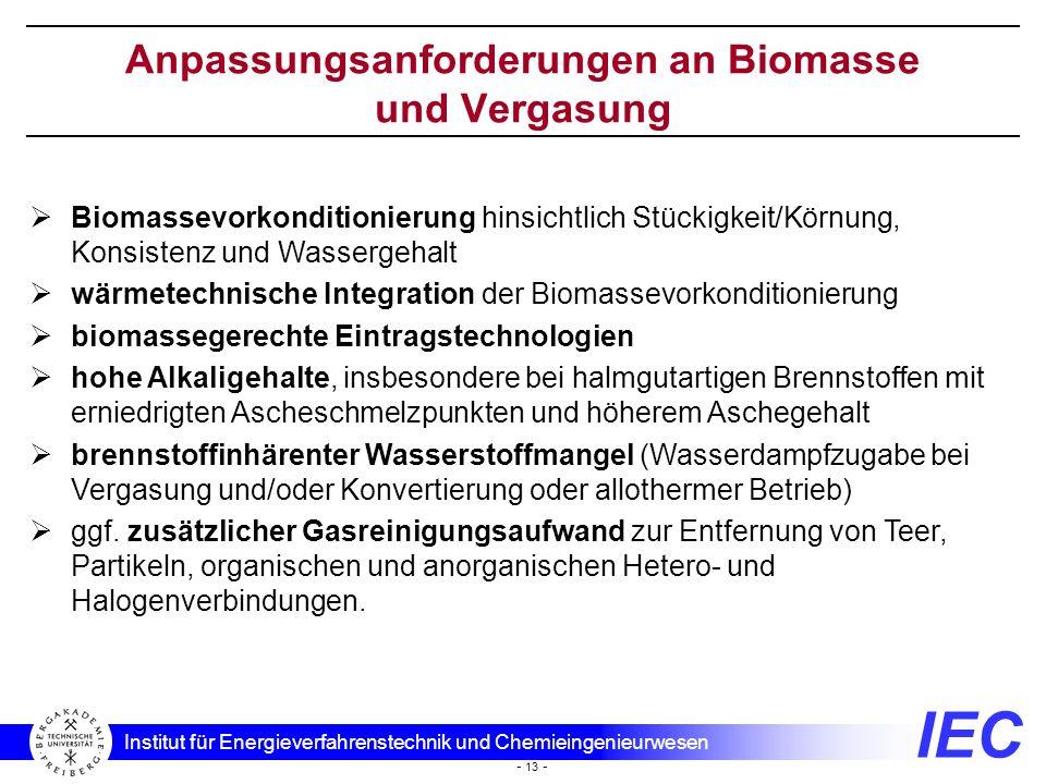 Anpassungsanforderungen an Biomasse und Vergasung