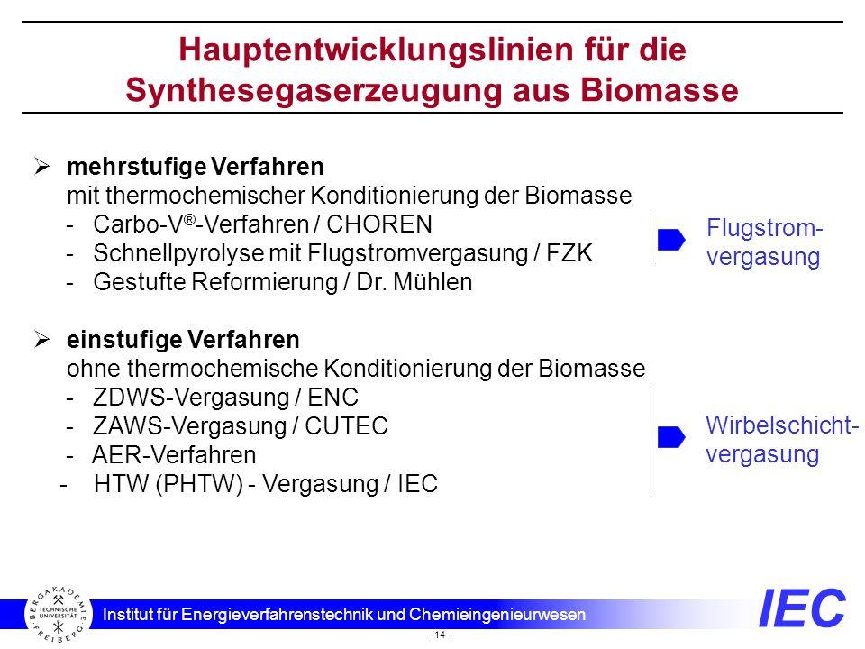 Hauptentwicklungslinien für die Synthesegaserzeugung aus Biomasse
