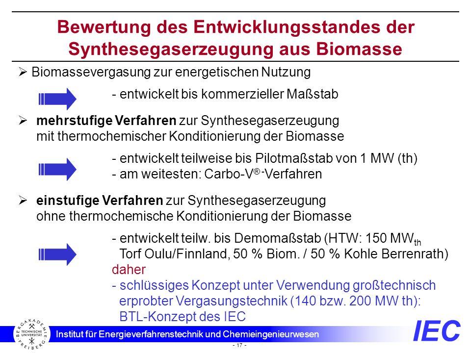 Bewertung des Entwicklungsstandes der Synthesegaserzeugung aus Biomasse
