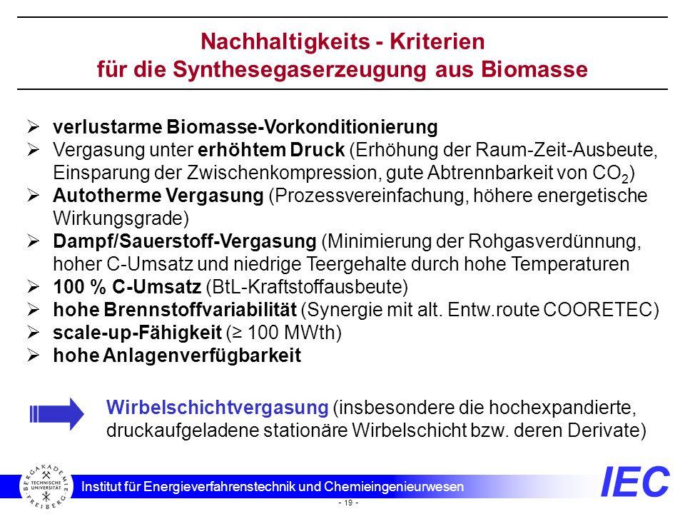 Nachhaltigkeits - Kriterien für die Synthesegaserzeugung aus Biomasse