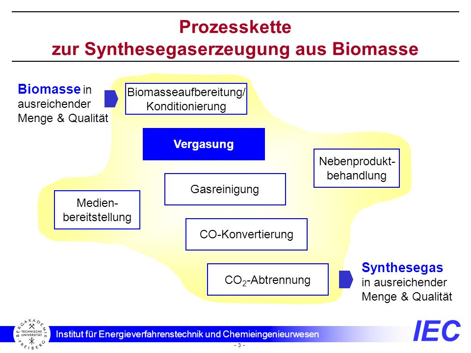 Prozesskette zur Synthesegaserzeugung aus Biomasse