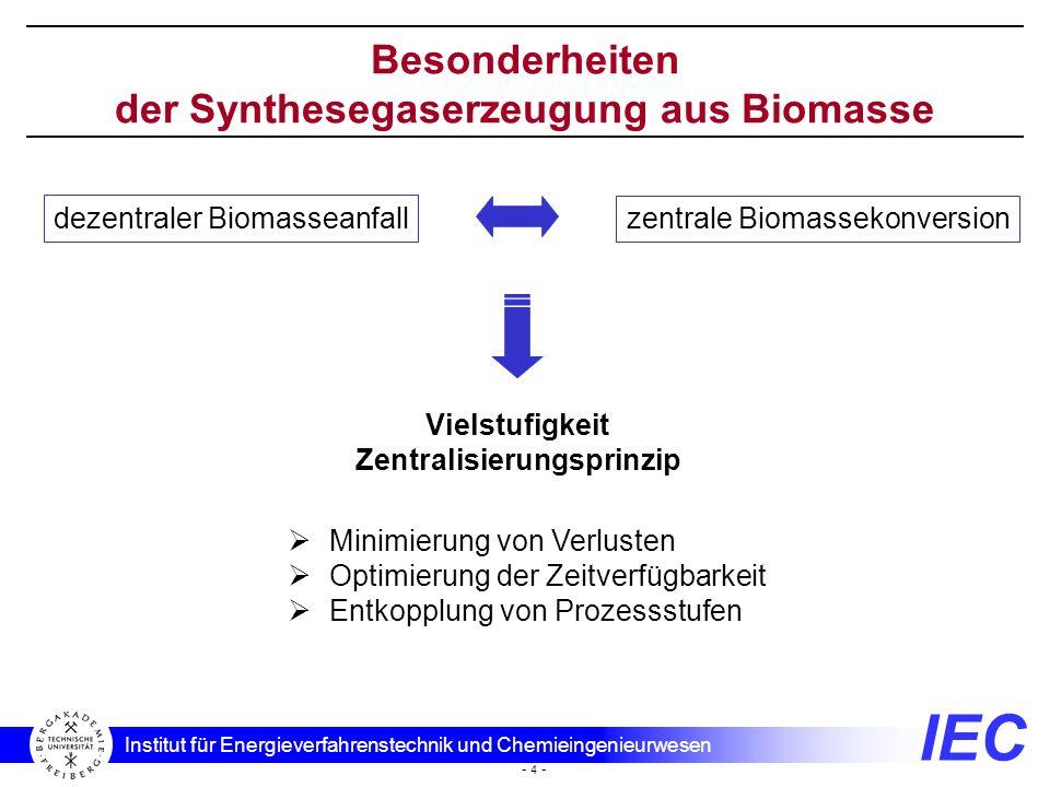 Besonderheiten der Synthesegaserzeugung aus Biomasse