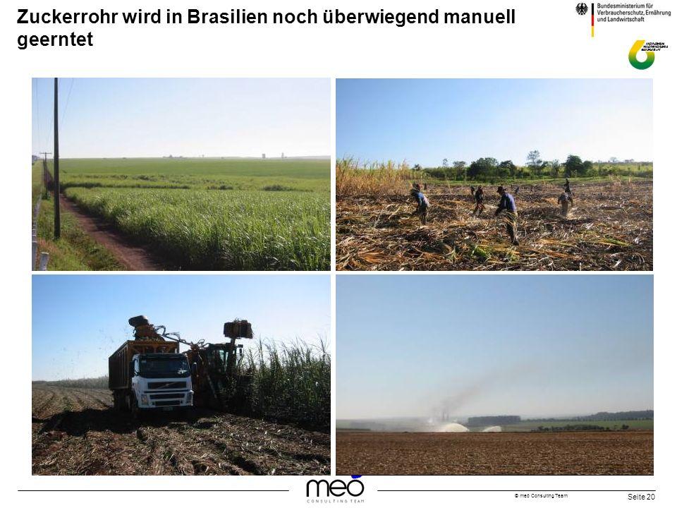 Zuckerrohr wird in Brasilien noch überwiegend manuell geerntet