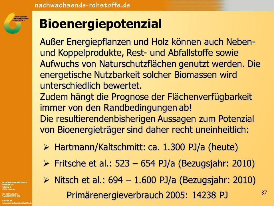 Bioenergiepotenzial