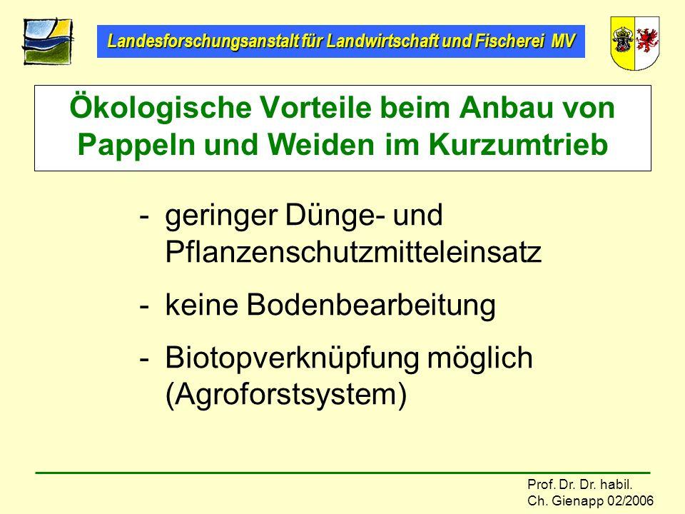 Ökologische Vorteile beim Anbau von Pappeln und Weiden im Kurzumtrieb