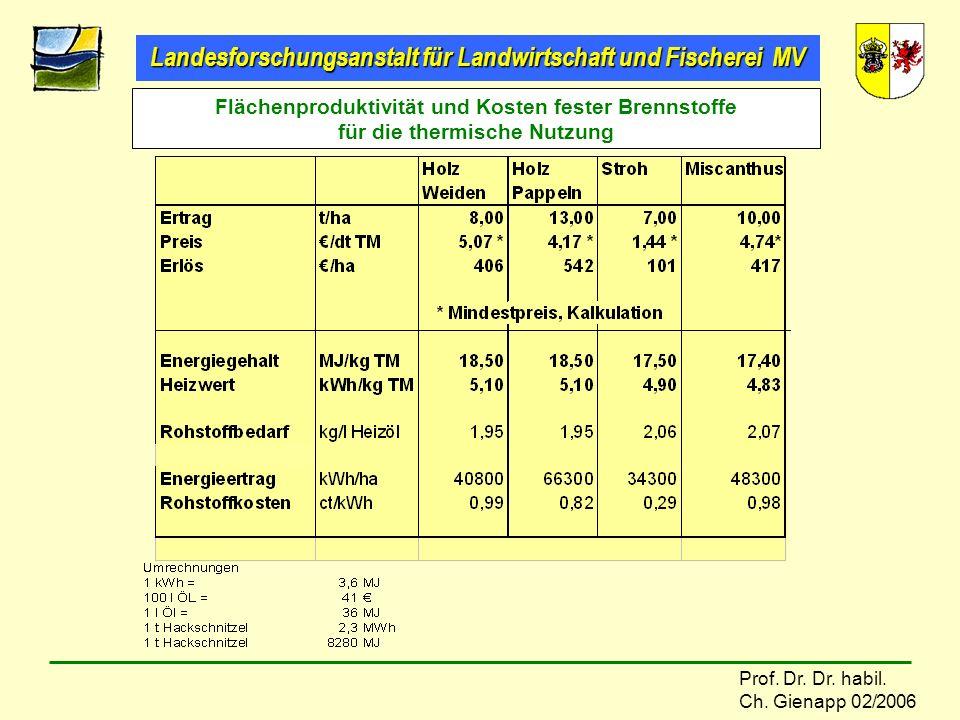 Flächenproduktivität und Kosten fester Brennstoffe für die thermische Nutzung