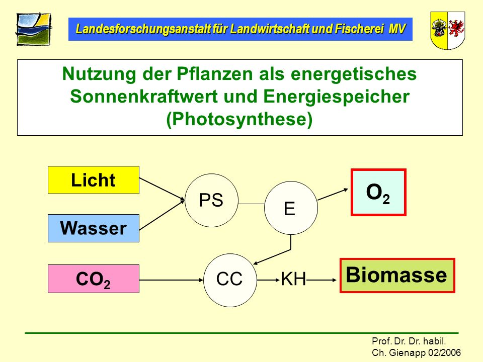 Nutzung der Pflanzen als energetisches Sonnenkraftwert und Energiespeicher (Photosynthese)